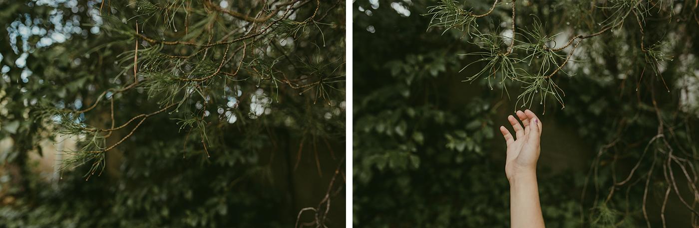 Velvet-Hush-fotografos-sesion-familia-064