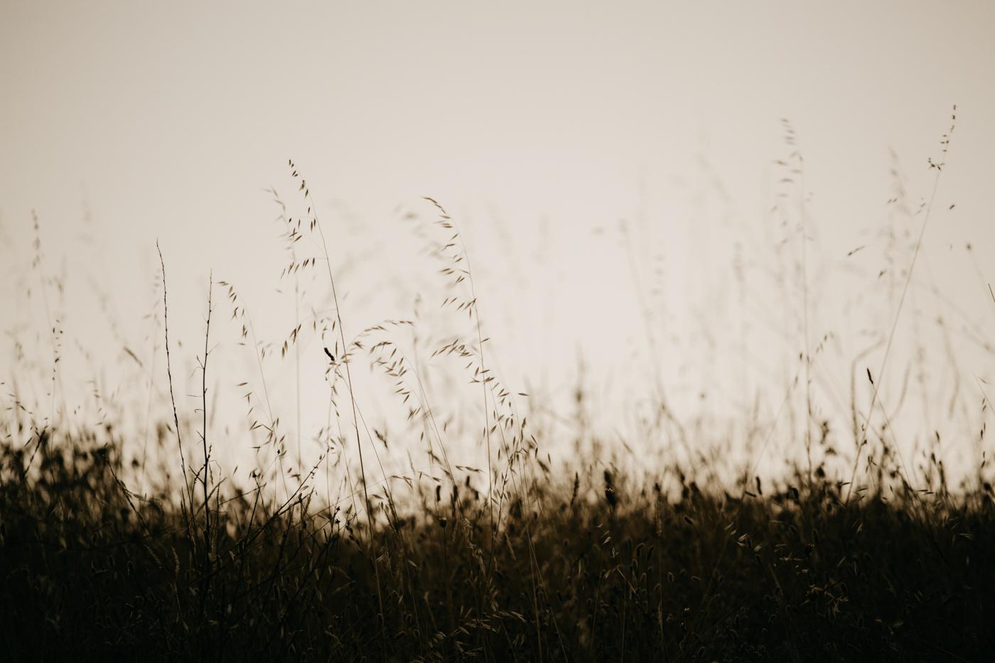 Velvet-Hush-sesion-pareja-patones-san-agustin-guadalix-048